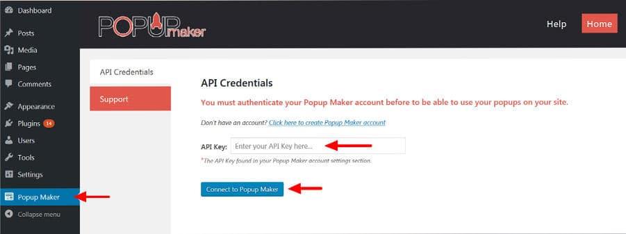 WordPress Popup Plugin API Credentials